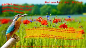 Mutmacher 8