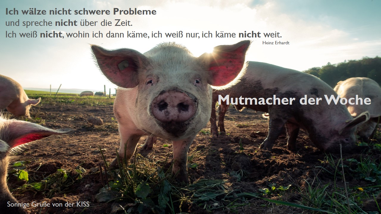 Mutmacher 13