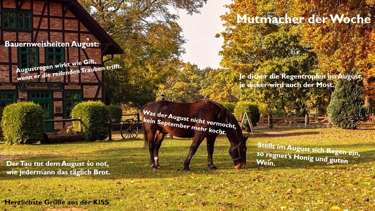 25-Mutmacher